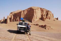 Wüstenfüchse im Iran